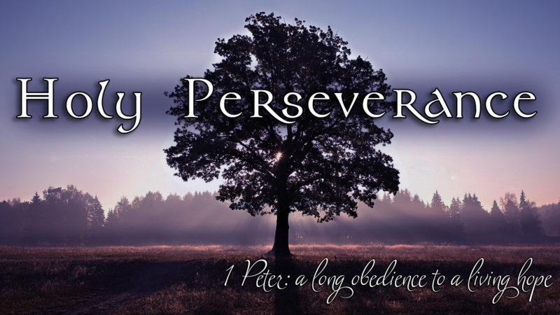 Divine Purpose Image