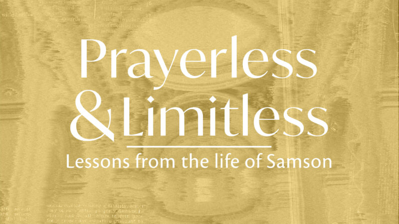 Limitless: Lessons from the Life of Samson Image