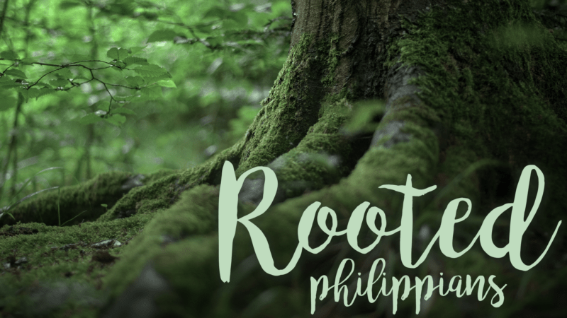 Rooted in Rejoicing Image